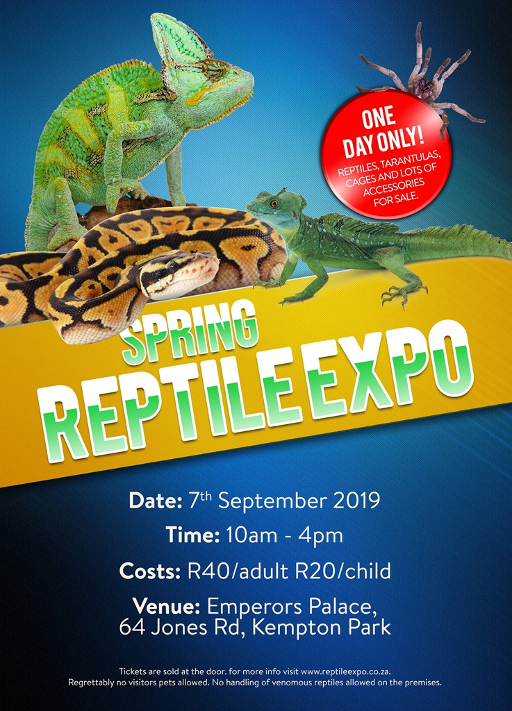 Reptile Expo South Africa 2019 - ▷ ▷ PowerMall