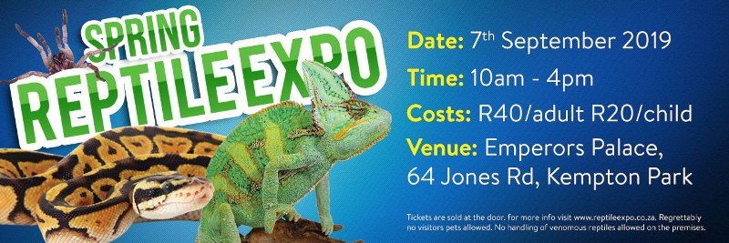 SPRING-EXPO-webbanner small 2019